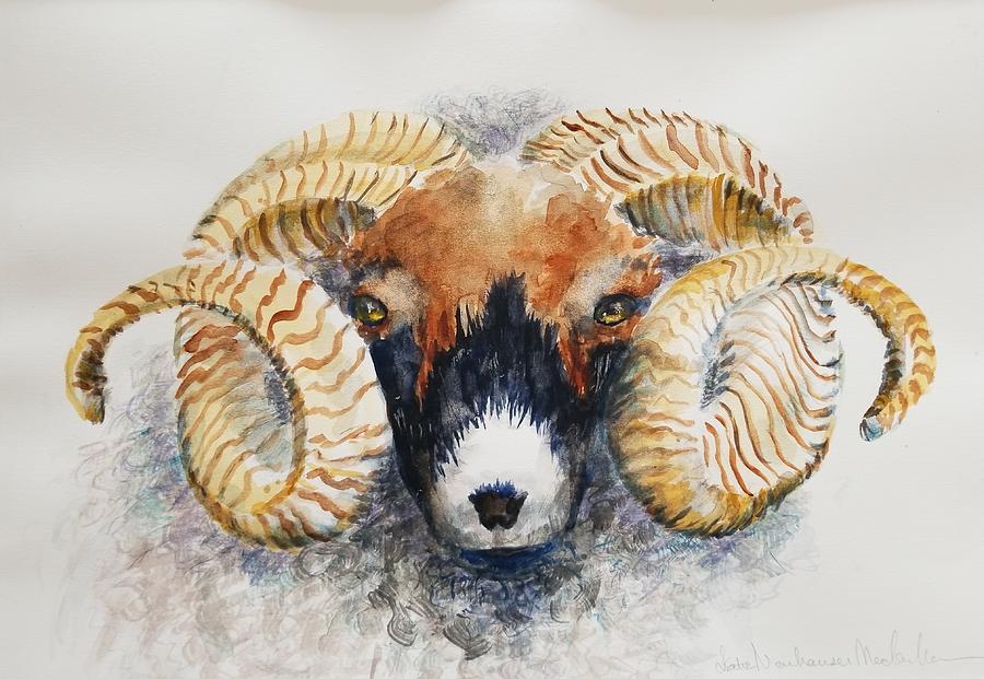 Scottish Ram by Lettie Neuhauser-MacLachlan