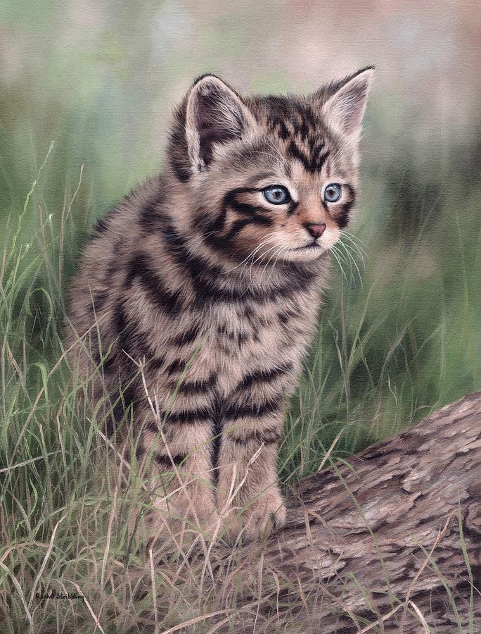 Scottish Wildcat Kitten by Rachel Stribbling