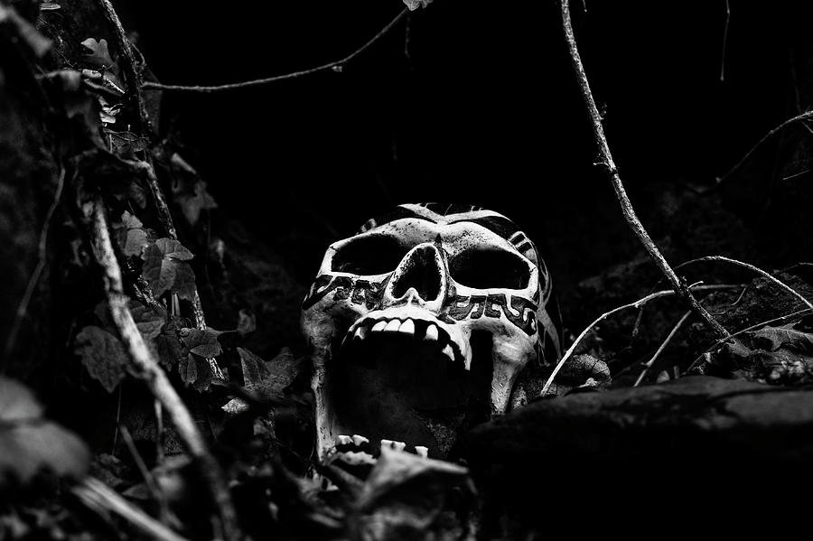 Scream in the Night by Betty Depee