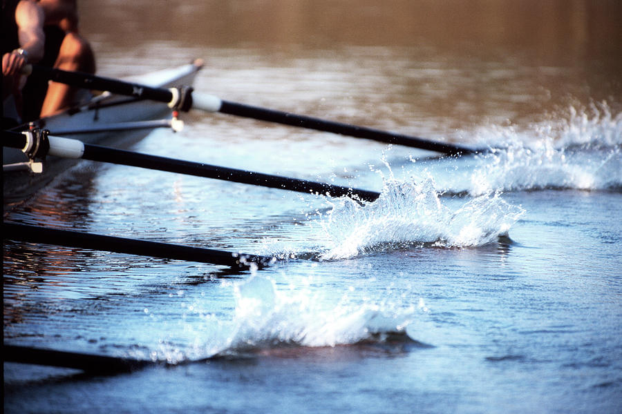 Sculling Team Rowing On Water Photograph by Robert Llewellyn