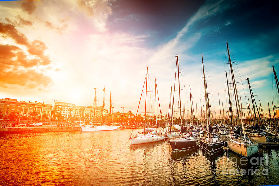 Harbour Photograph - Sea Bay With Yachts At Sunset by In Green