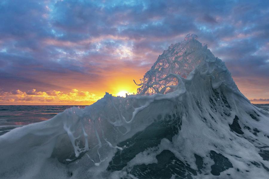 Sea-foam Honey-comb by Sean Davey