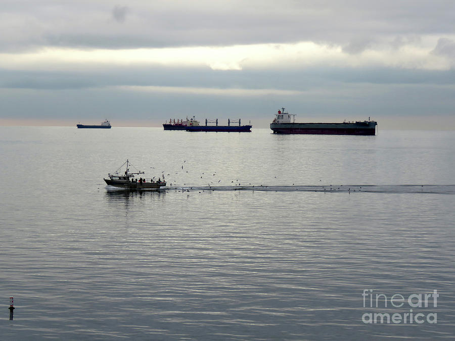 West Coast Photograph - Sea Going by Mary Mikawoz