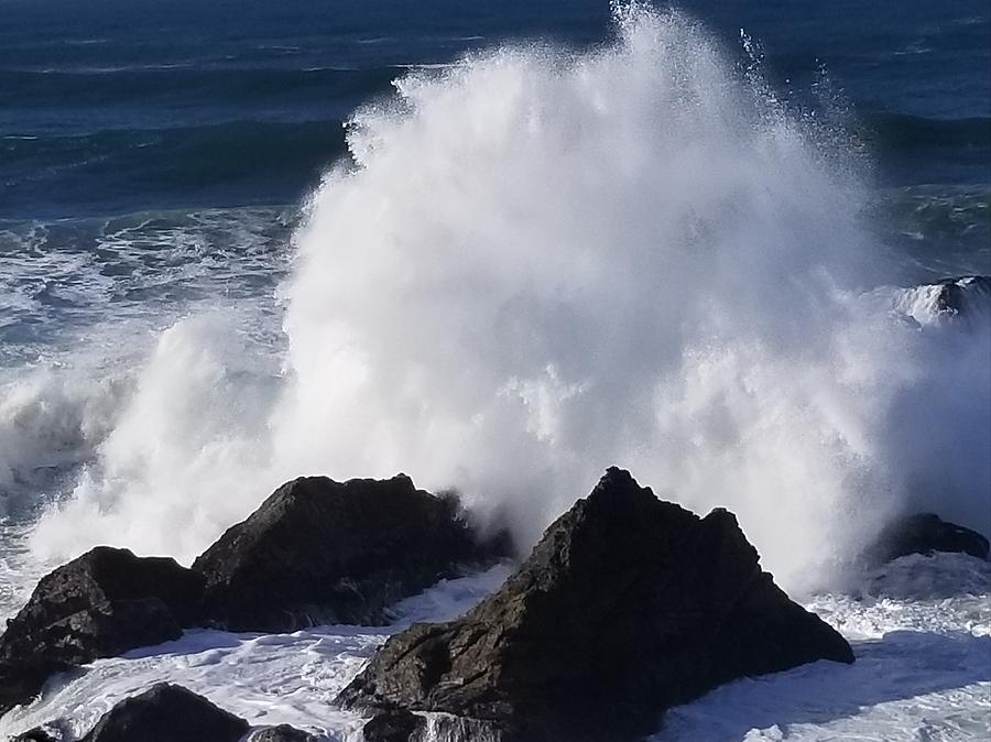 Sea Ranch, huge waves after the storm by Lettie Neuhauser-MacLachlan