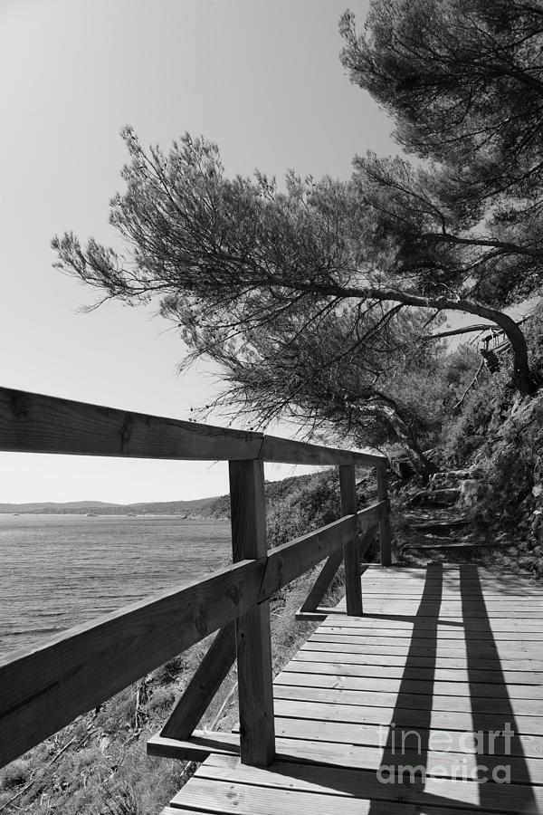 Sea Side by Tom Vandenhende