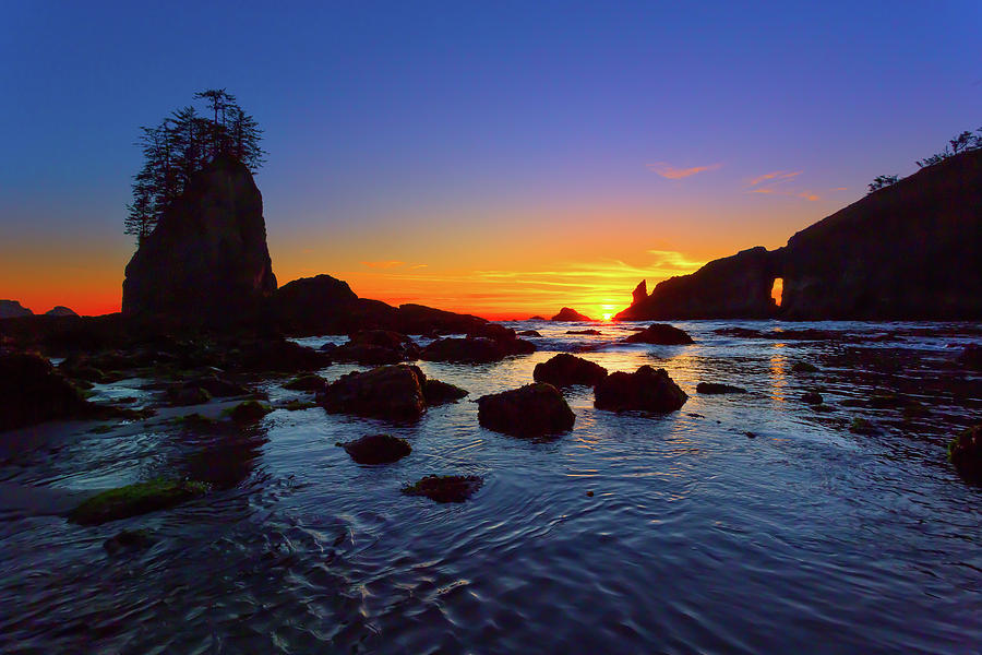 Sea Stacks and Arches Photograph by Brian Knott Photography