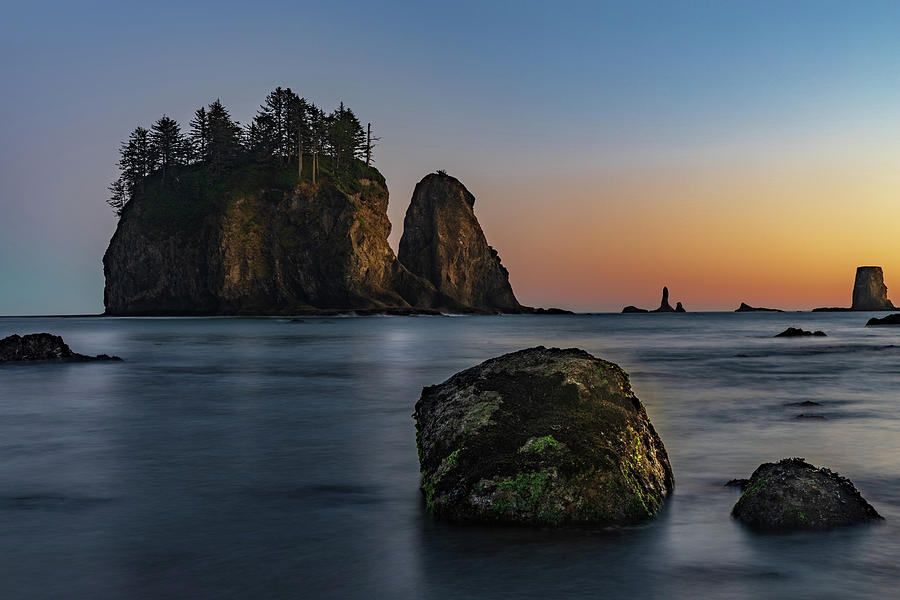 Sea Stacks at La Push by Ed Clark