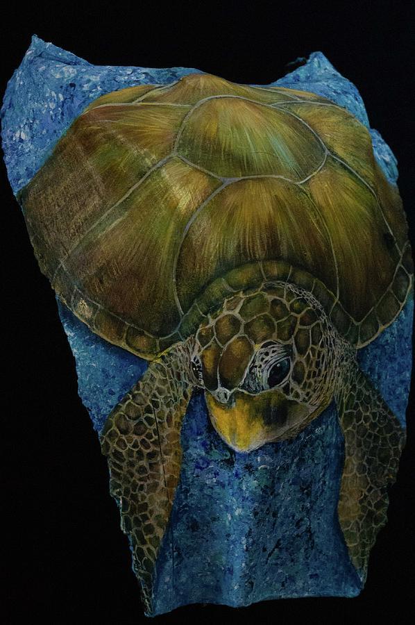 Sea Turtle green by Nancy Lauby