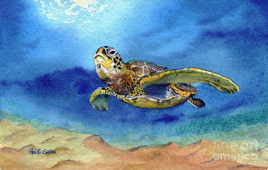 Sea Turtle by Heidi Gallo