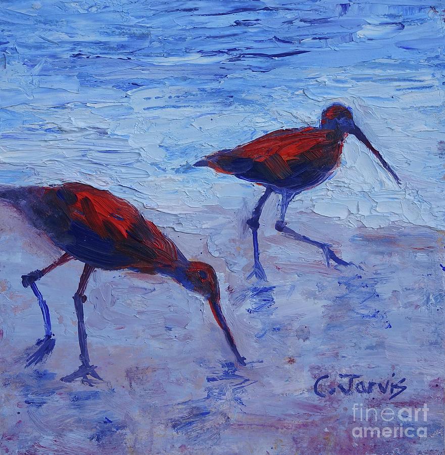 Seabird Stroll by Carolyn Jarvis