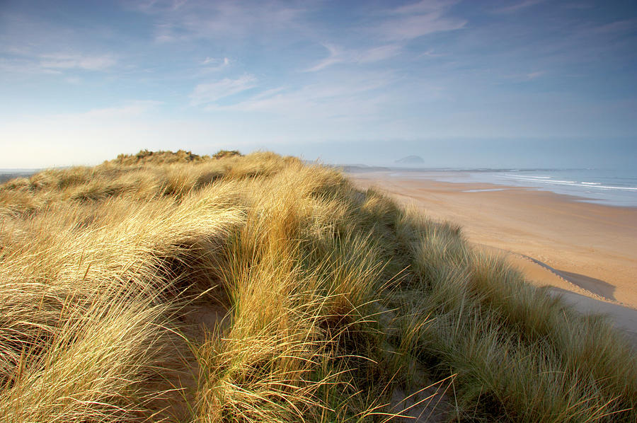 Seabreeze On The Sand Dunes Along The Photograph by Dchadwick