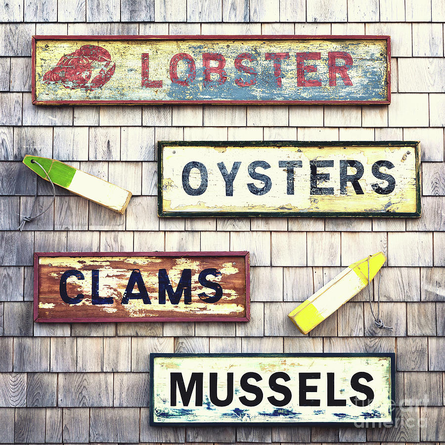 Seafood Photograph - Seafood Signs by Jane Rix