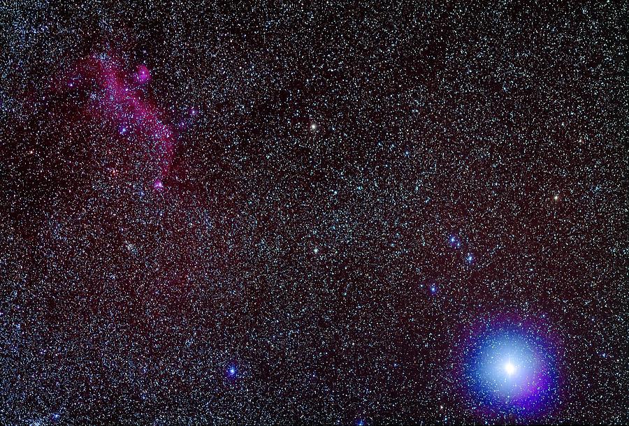 Seagull Nebula And Sirius by Alan Dyer