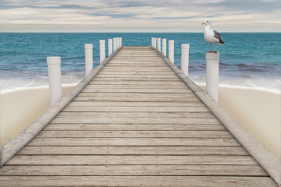 Seagull perched on the pier pillar on the turquoise blue waters  by Manny DaCunha