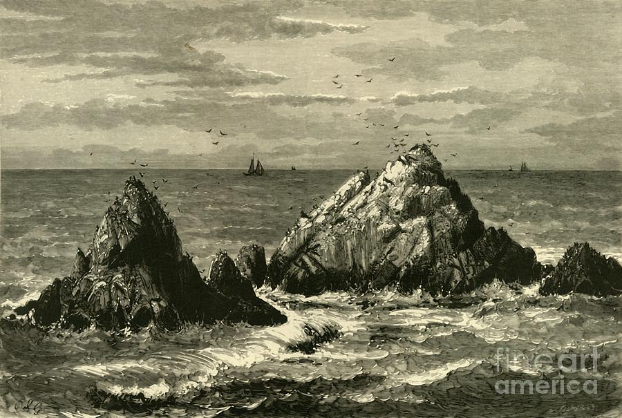 Seal Rocks Drawing by Print Collector