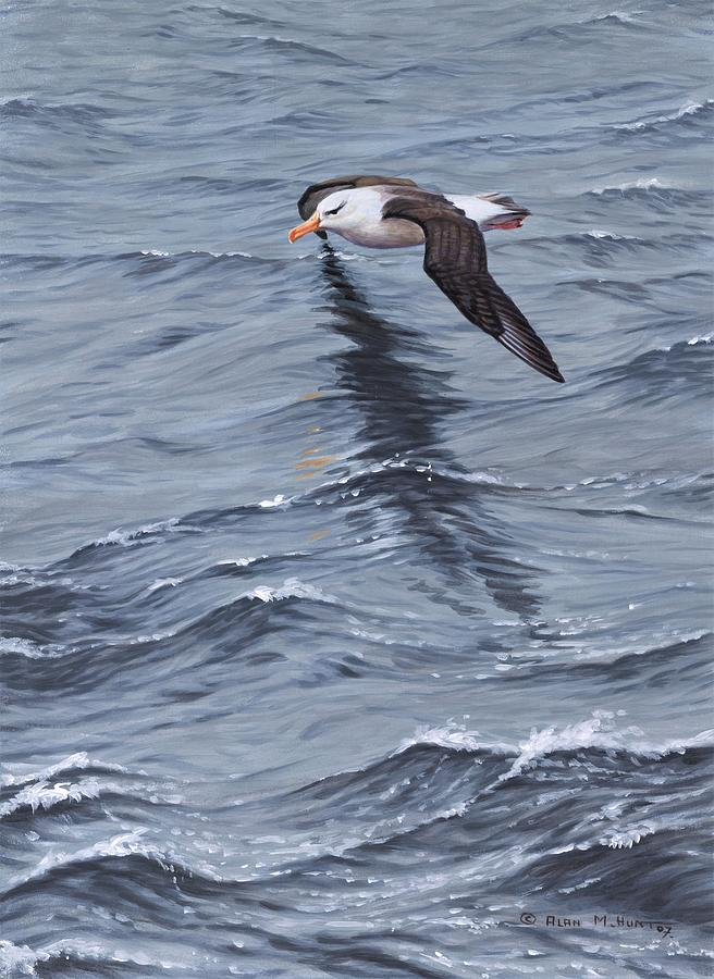 Paintings Painting - Searching Seabird Painting By Alan M Hunt by Alan M Hunt
