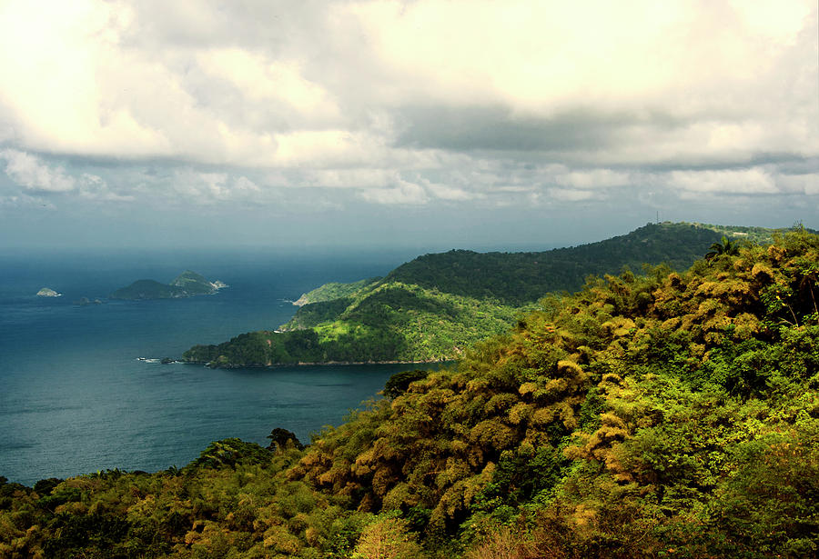 Scenic Photograph - Seascape In Tobago by Karen Brodie