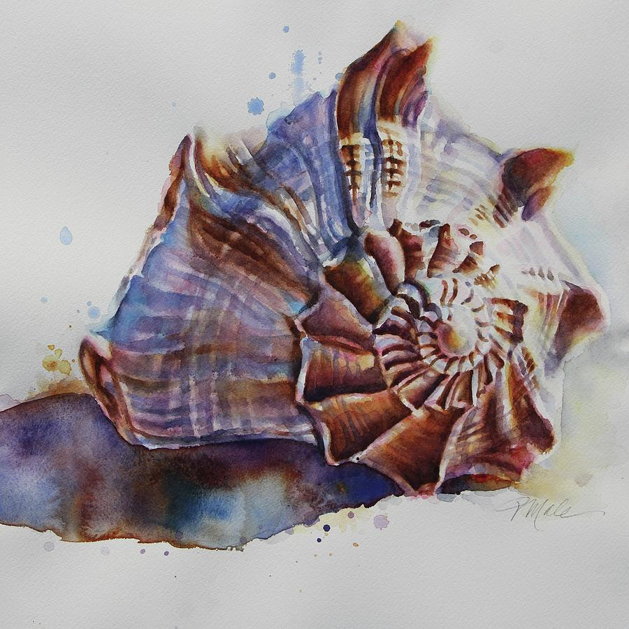 Seashell Swirl by Tracy Male