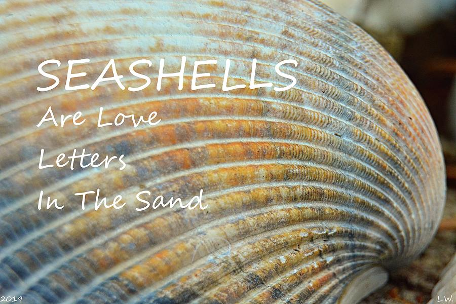 Seashells Are Love Letters In The Sand by Lisa Wooten