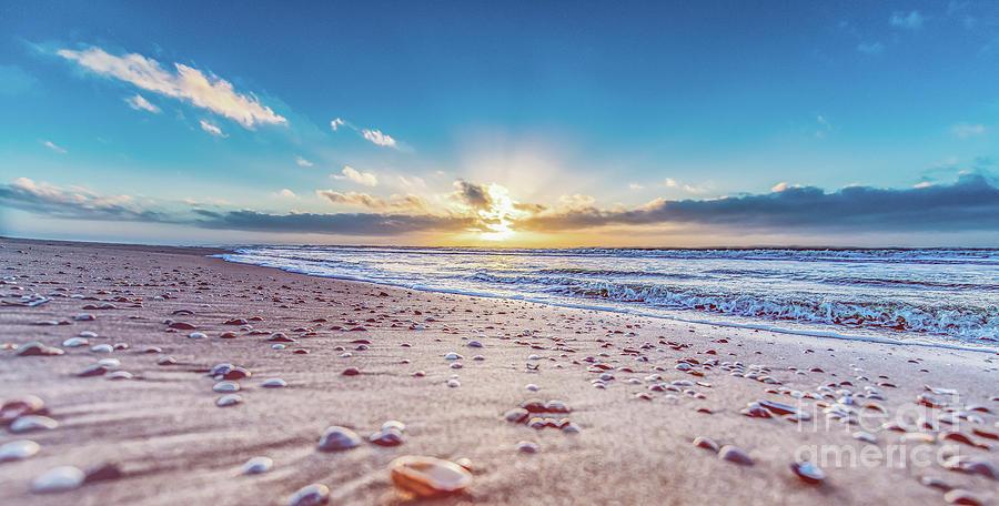Seashells enjoying the sunset by Alex Hiemstra