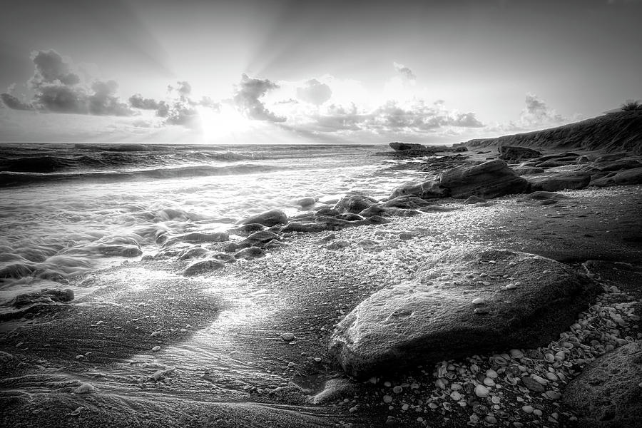 Cove Photograph - Seashells On The Seashore In Black And White by Debra and Dave Vanderlaan