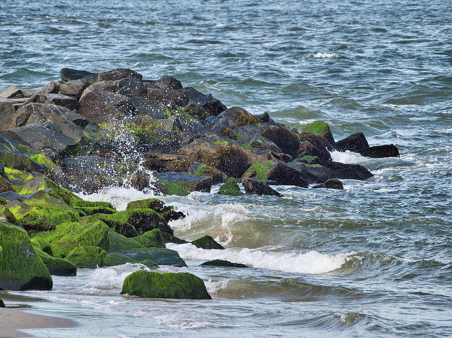 Seashore by Paul Ross