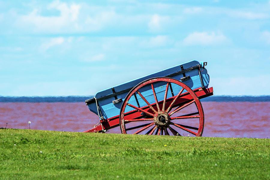 Seaside Cart by Douglas Wielfaert