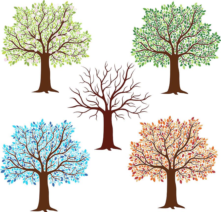 Seasonal Trees Digital Art by Flyinggiraffestudio