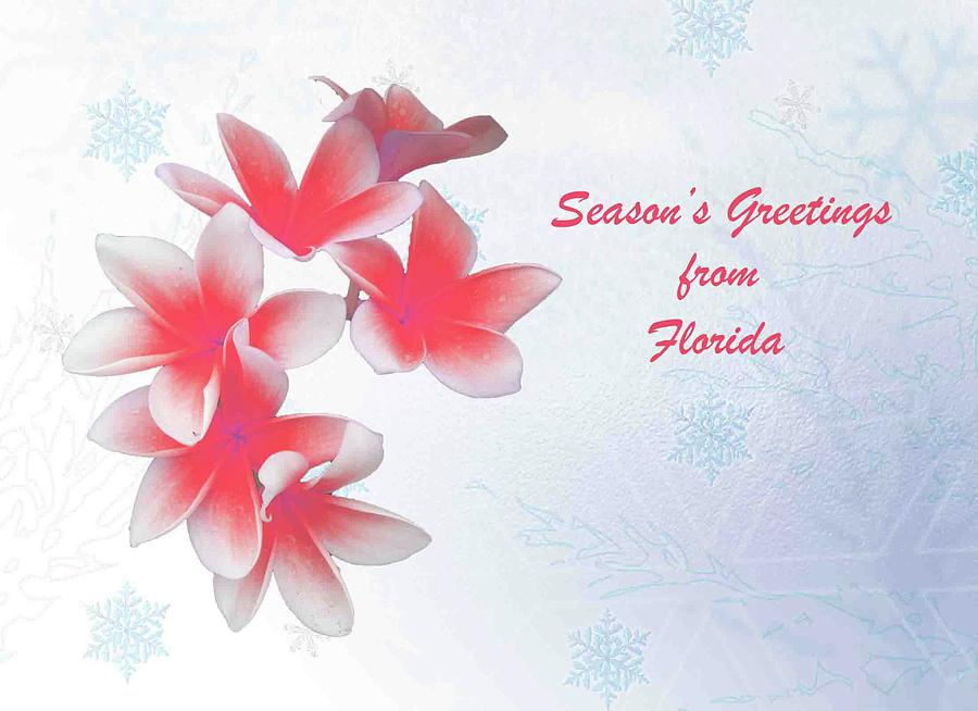 Seasons Greetings From Florida by Jacqueline Sleter