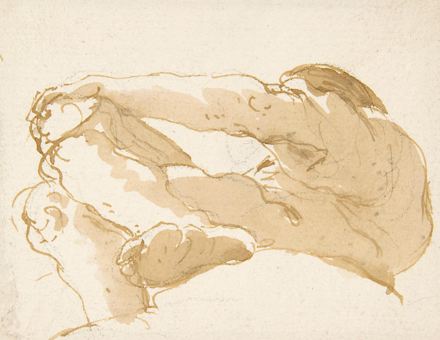 Italian Painters Drawing - Seated Man Turned Towards The Left Seen From Below by Giovanni Battista Tiepolo