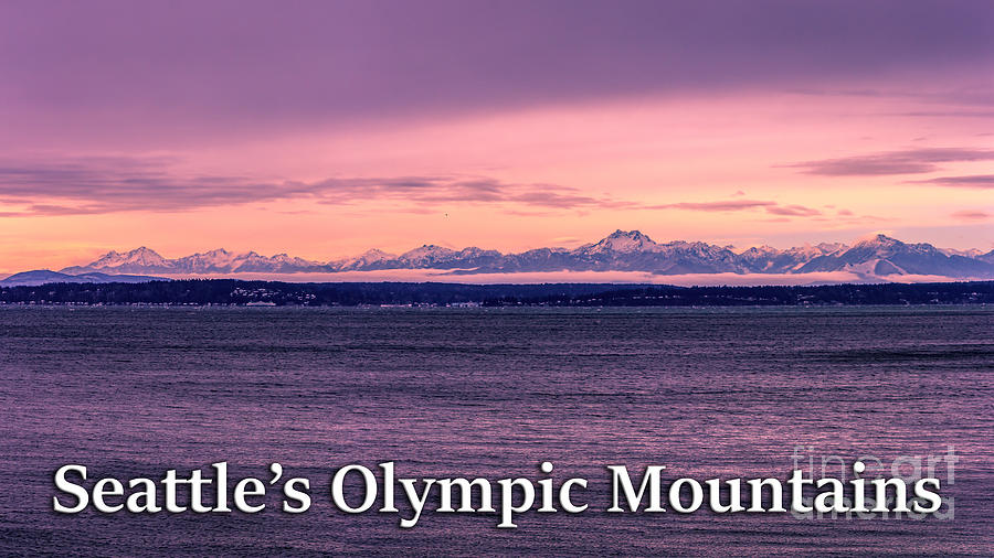 Olympic Mountains Photograph - Seattles Olympic Mountains by G Matthew Laughton