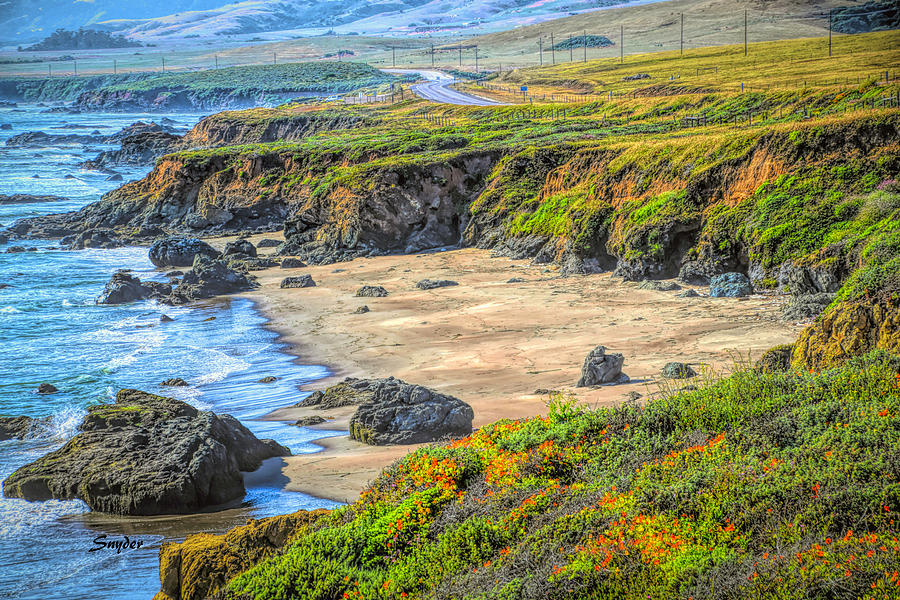 Barbara Snyder Photograph - Secluded Beach Big Sur by Barbara Snyder