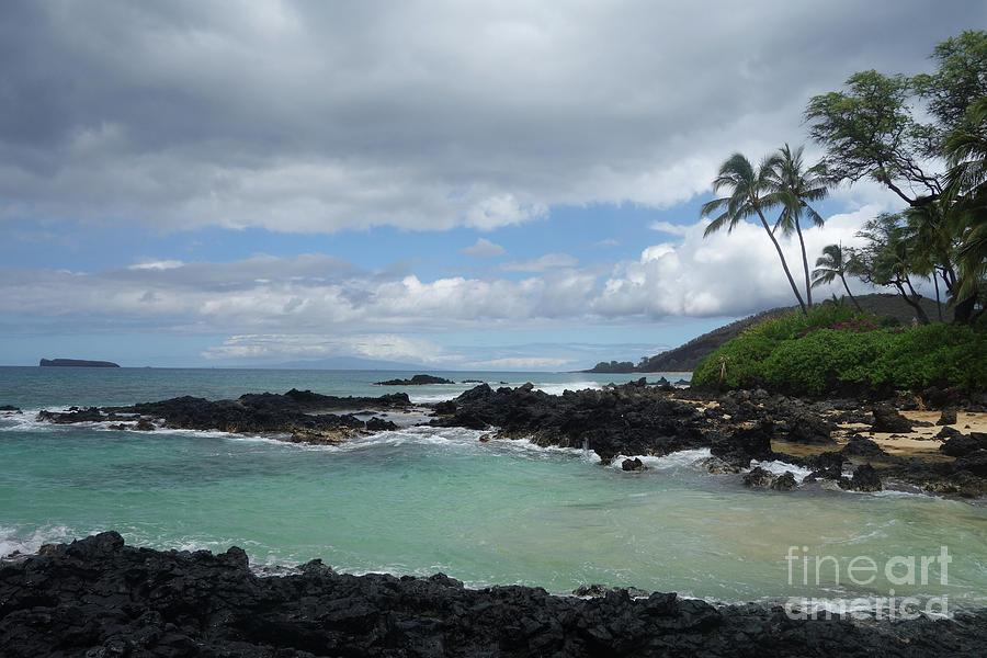 Secret Beach at Maui, Hawaii by Wilko Van de Kamp