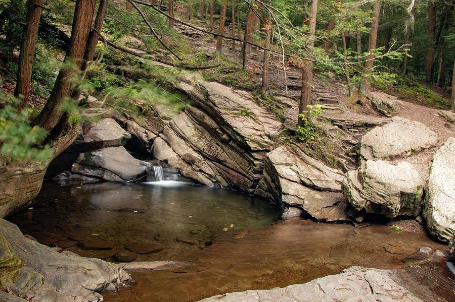 Secret Forest Falls 2 by Kristia Adams
