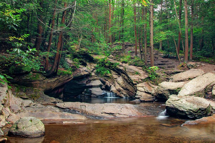 Secret Forest Falls by Kristia Adams