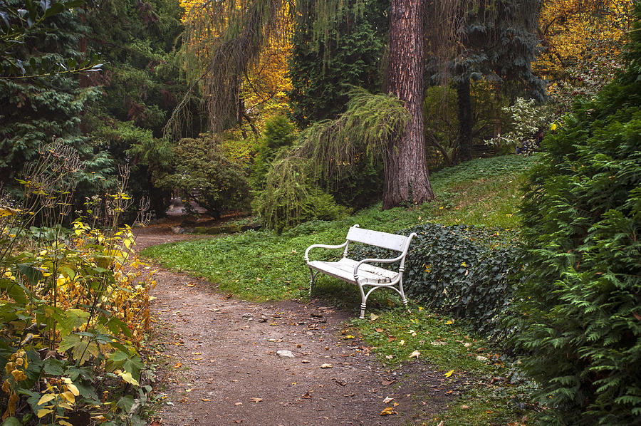 Pleasant Secret Garden In Fall Time 3 By Jenny Rainbow Andrewgaddart Wooden Chair Designs For Living Room Andrewgaddartcom