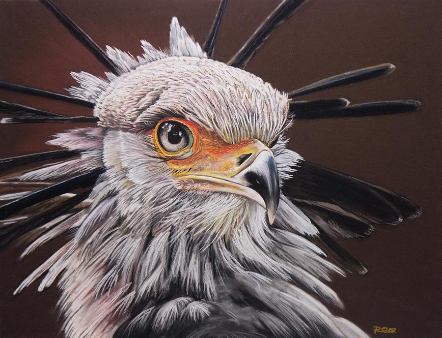 Secretary Bird Pastel - Secretary Bird by Raymond Ore