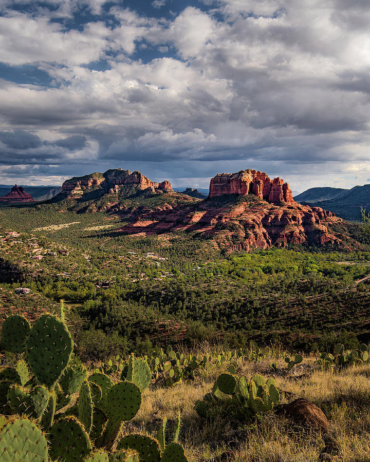 Sedona  - View from the Airport Trail by William Christiansen