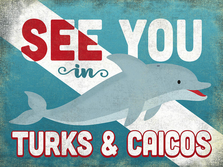 Turks & Caicos Digital Art - See You In Turks Caicos Dolphin by Flo Karp