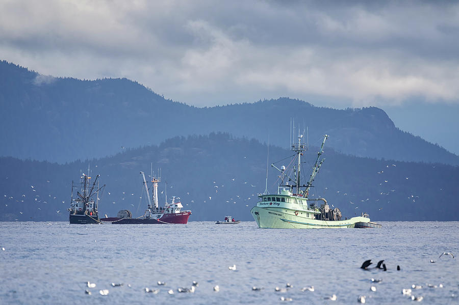 Seiners off Columbia Beach by Randy Hall