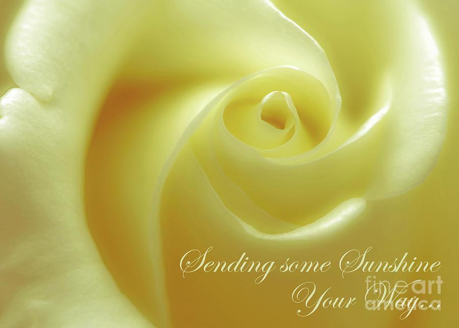 Greeting Photograph - Sending Sunshine by Banyan Ranch Studios