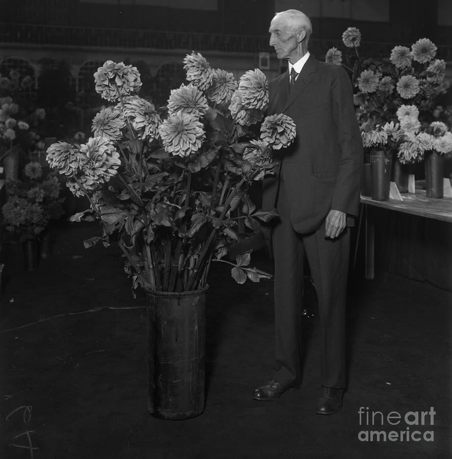 Senior Man Looking At Flowers Photograph by Bettmann