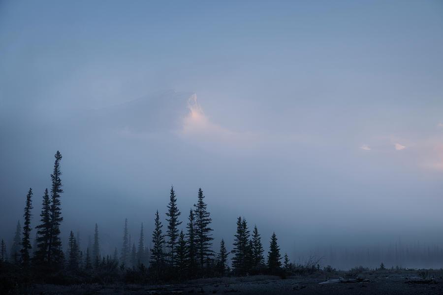 Sentinels by Dan Jurak