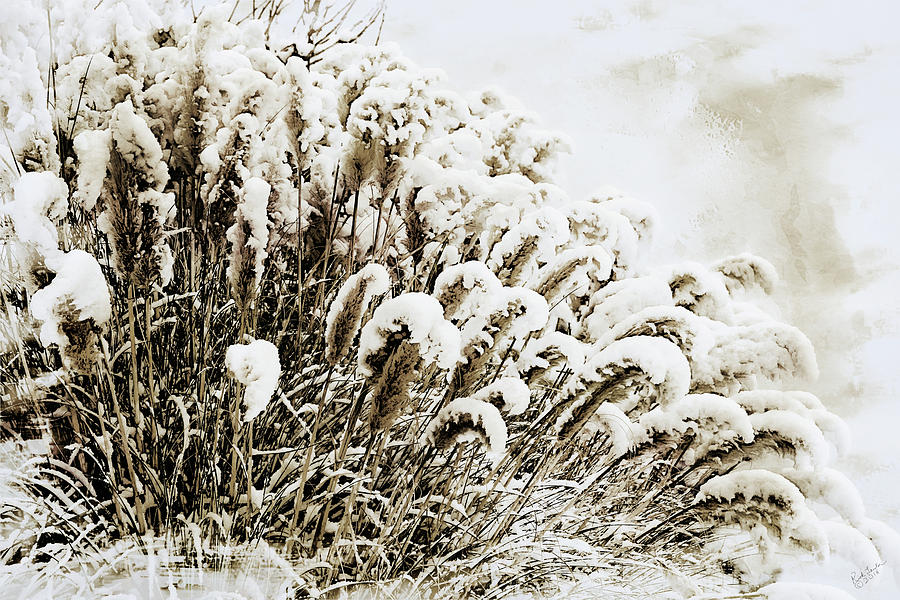 Snow Digital Art - Sepia Snow by Rick Lawler