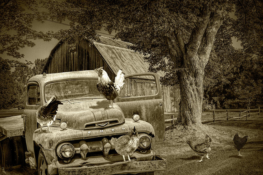 Sepia Tone of Old Vintage Ford Truck with Free Range Chickens by Randall Nyhof