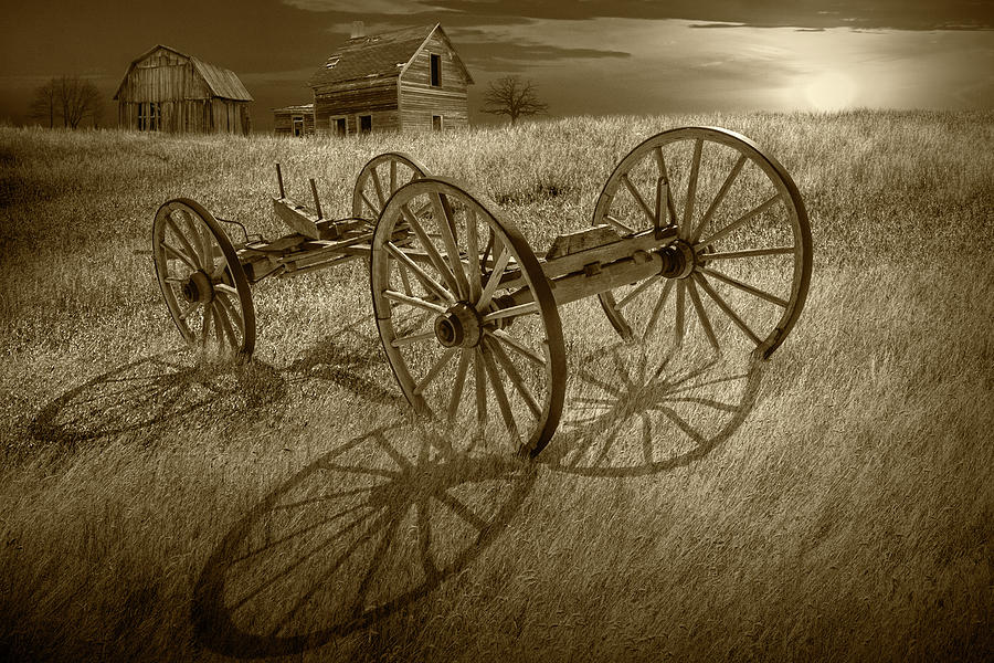 Sepia Tone Photograph of a Farm Wagon Chassis in a Grassy Field  by Randall Nyhof