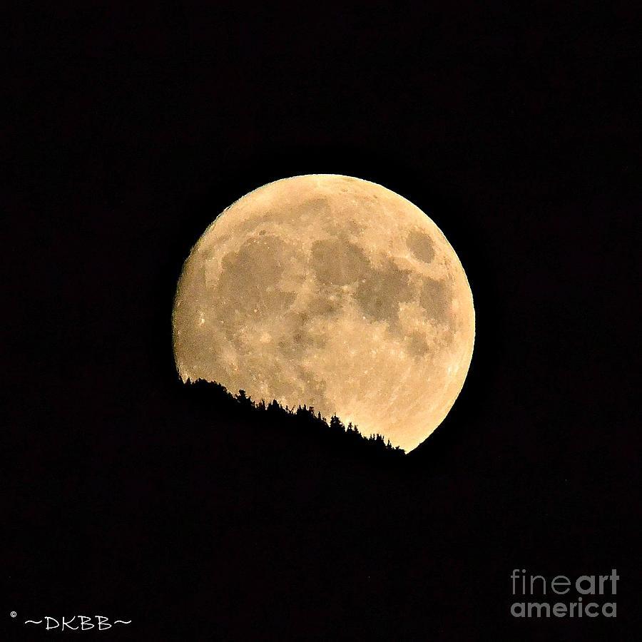 September Moonrise by Dorrene BrownButterfield