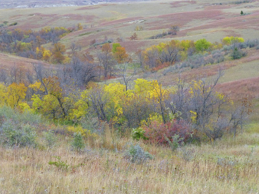 North Dakota Photograph - September Perfection On The Western Edge by Cris Fulton