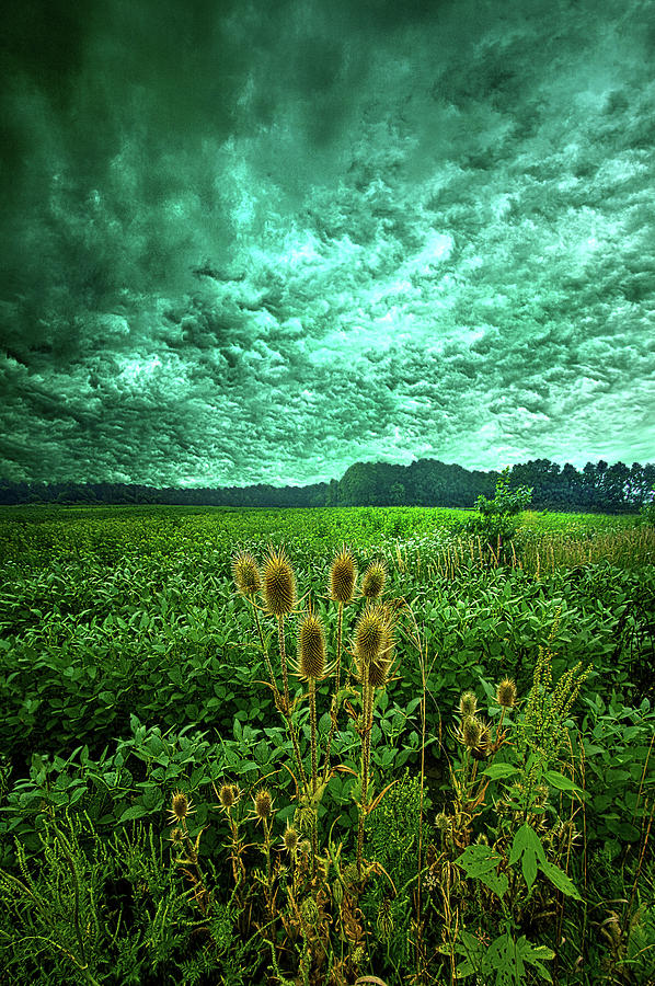 September Storm by Phil Koch
