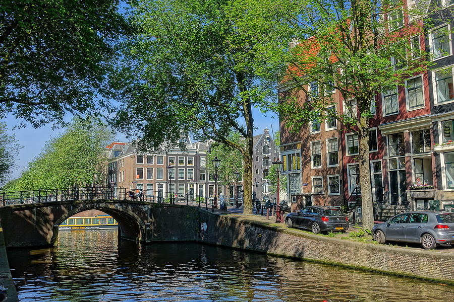 Canal Photograph - Tree Lined Canal in Amsterdam by Patricia Caron